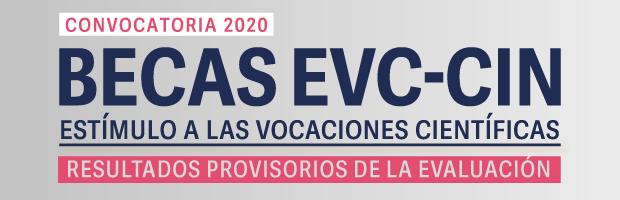Becas EVC-CIN 2020. Resultados provisorios de la evaluación